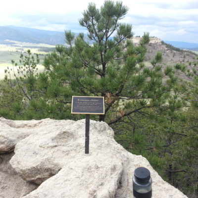 Paddocks Point view