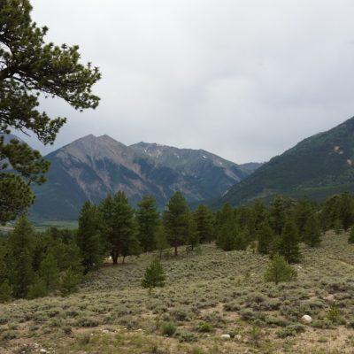 Below treeline on the South Elbert trail