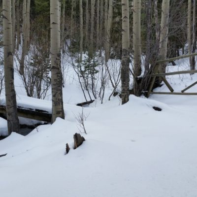 Devils Head trail