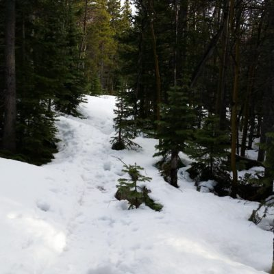 More snow after the turn to Eugene Mine trail