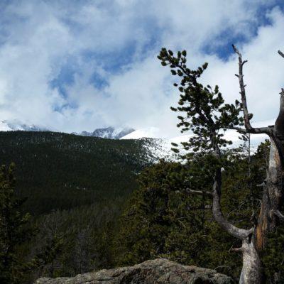 View of  of Longs Peak area