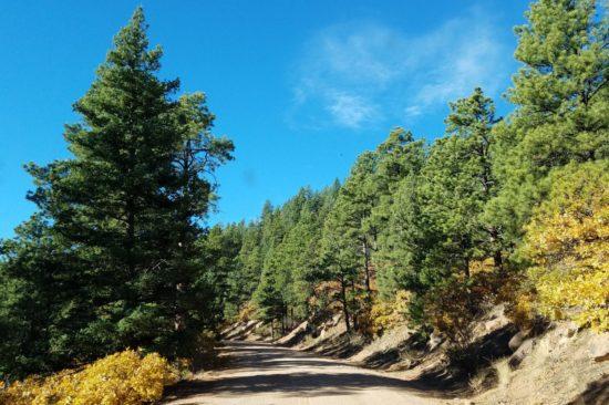 Taking Mt Herman Rd to the Mt Herman trailhead
