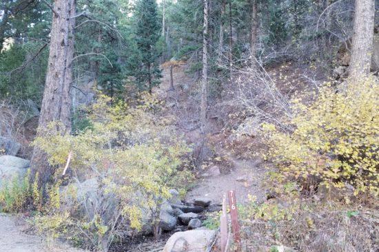 Mt Herman trailhead at marker 716