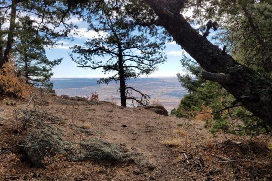 Cresting the Mt Herman ridge-line looking east