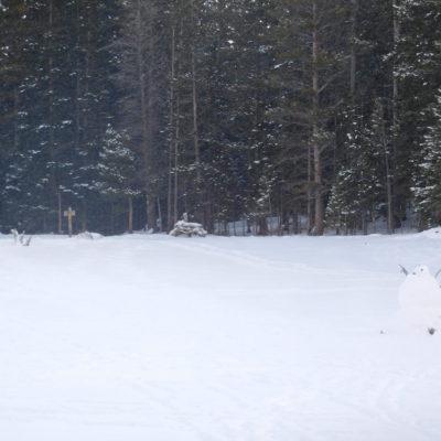 Nymph Lake snowman (on right)