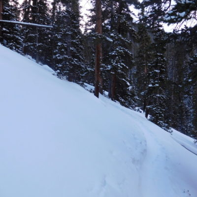 Very steep through the forest