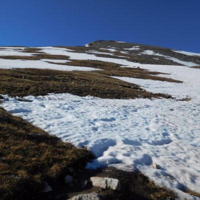 Huron Peak summit ahead