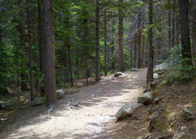 Alberta Falls trail