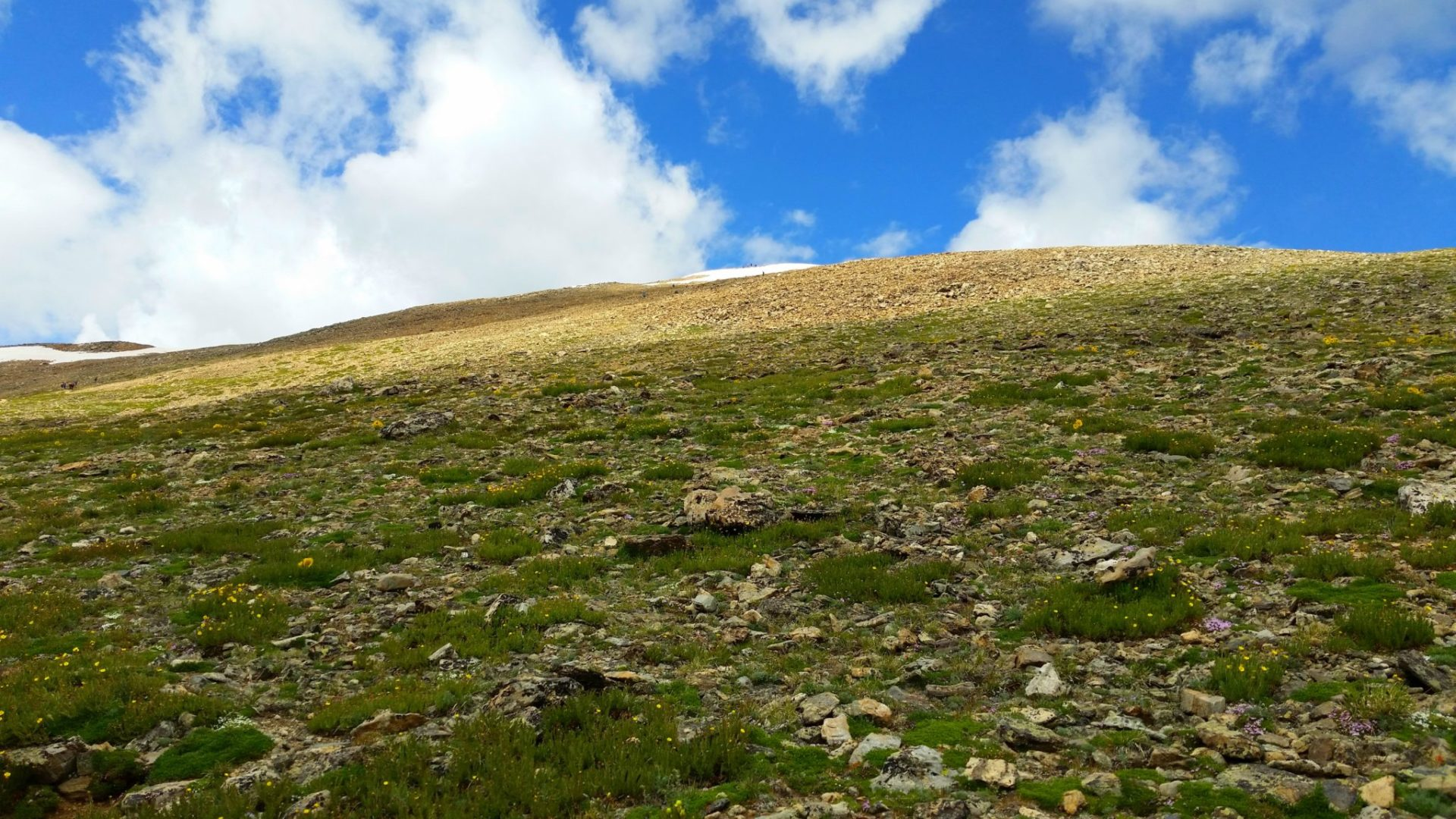 Mt Elbert summit area from the South Elbert trail