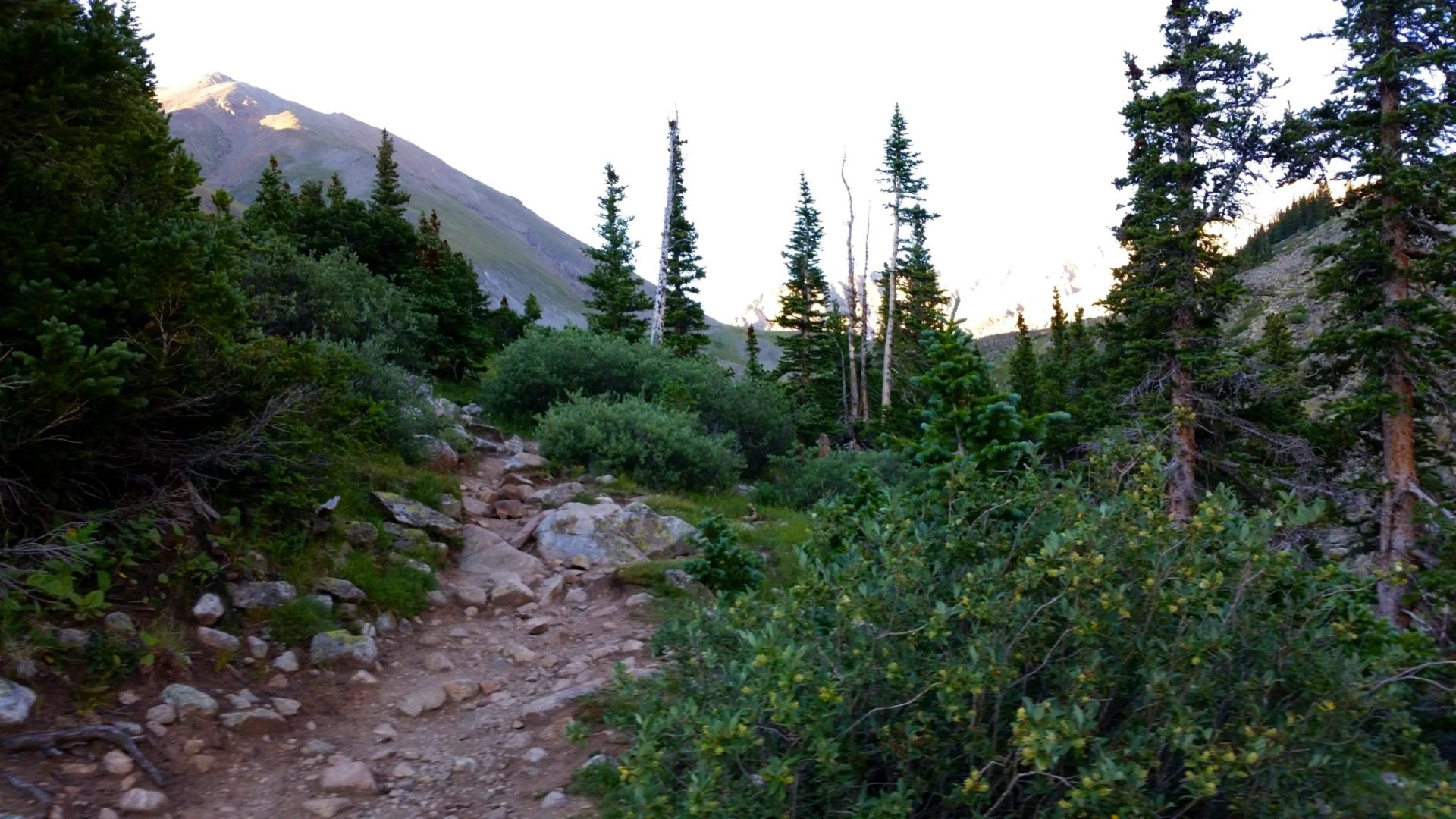 Early morning on the Missouri Gulch trail