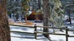 Ranger summer cabin