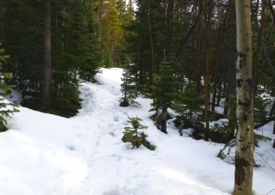 Snow deepened at the turnoff for Eugene Mine