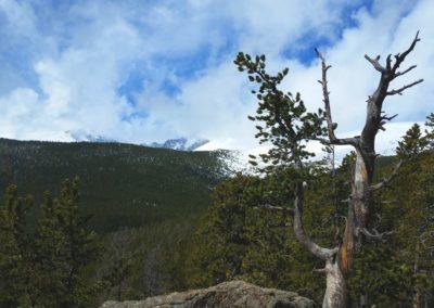 Looking towards Longs Peak