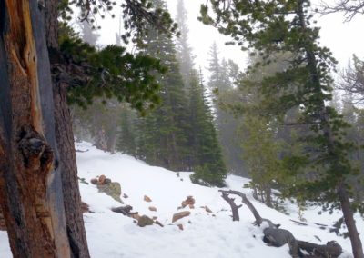 heavy thunderstorm with snow on Estes Cone