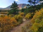 Mt Herman