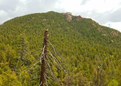 Cheyenne Mountain geological summit