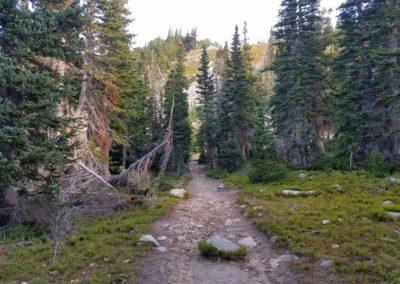 Mt Audubon trail
