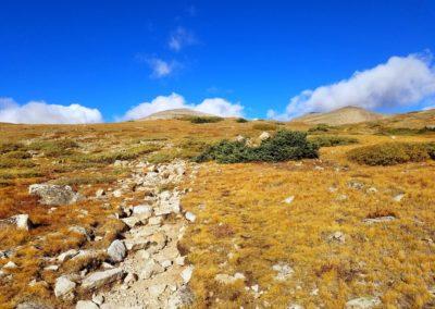 Mt Audubon trail above tree-line