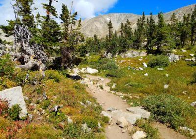 Blue Lake trail near tree-line