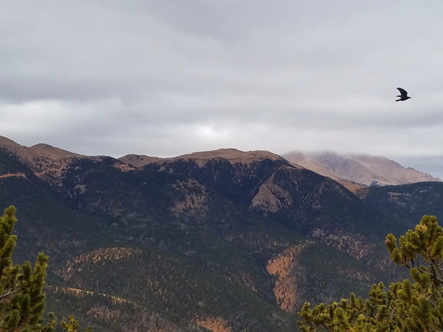 Pike Peak in the background, with Almagre Mountain in the foreground