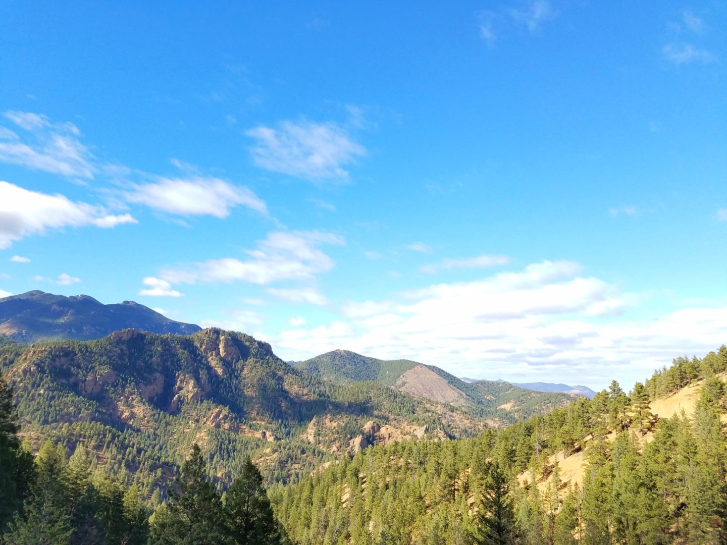 View from Gold Camp Rd