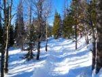 Easy trail to Nymph Lake