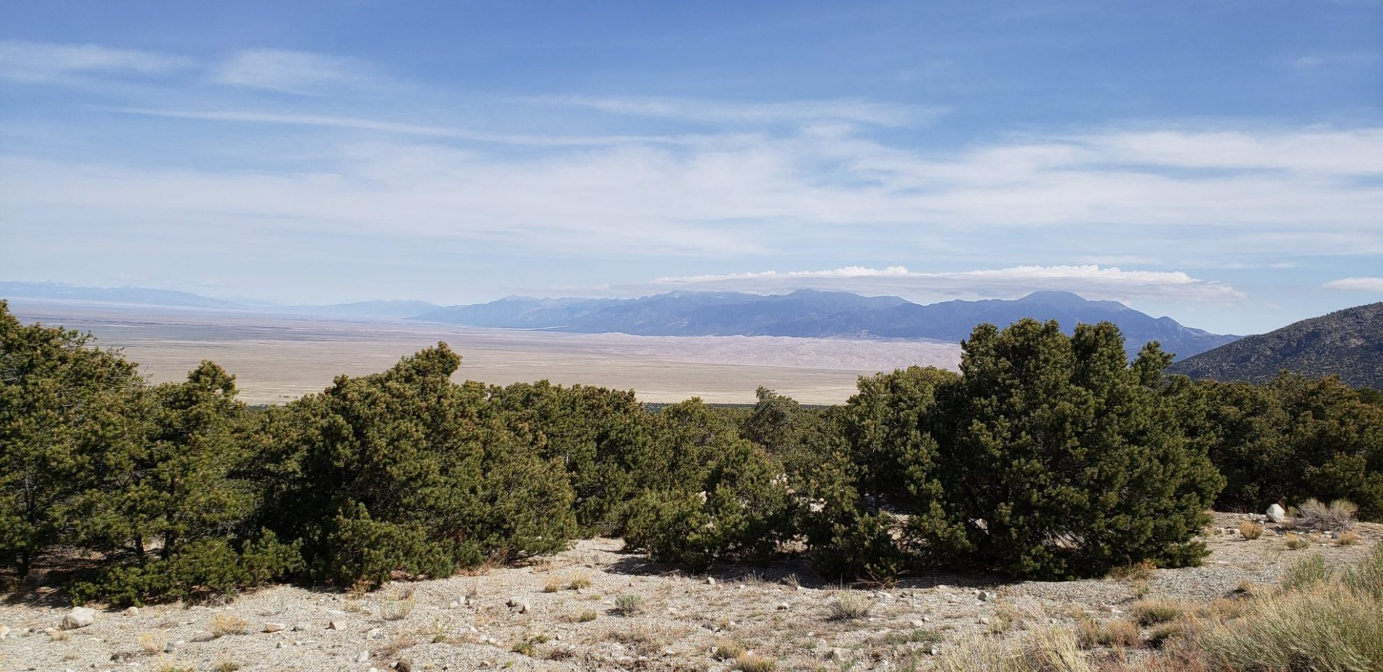 View of the Great Sand Dunes from Zapata Falls trail