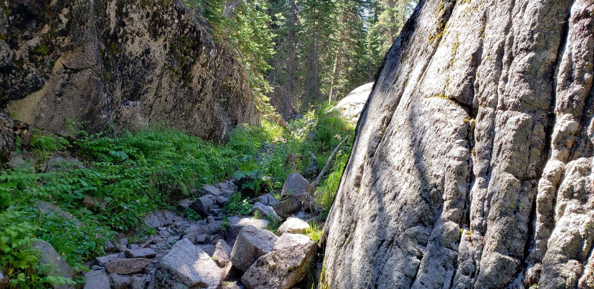 Narrow point in the Cascade trail