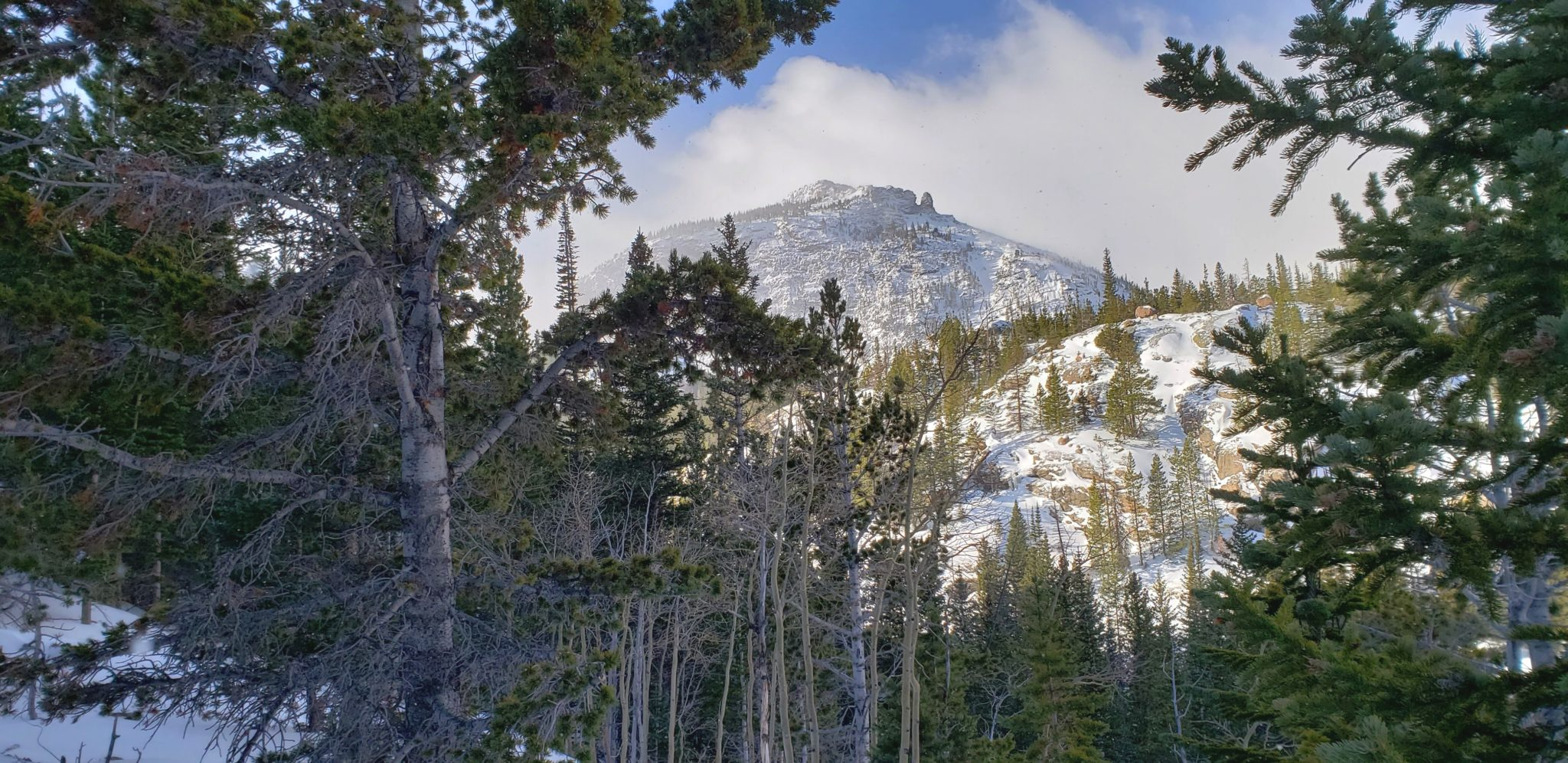Otis Peak 12,486'