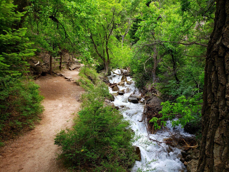 The trail follows Dead Horse Creek