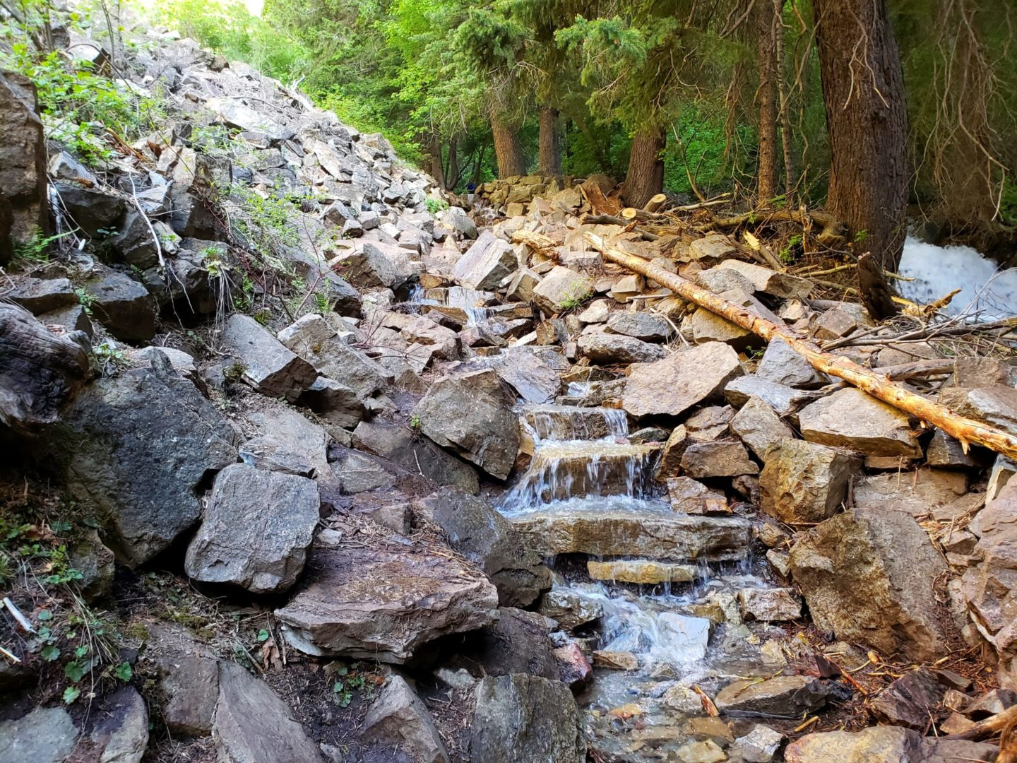 The trail turned into a mini waterfall