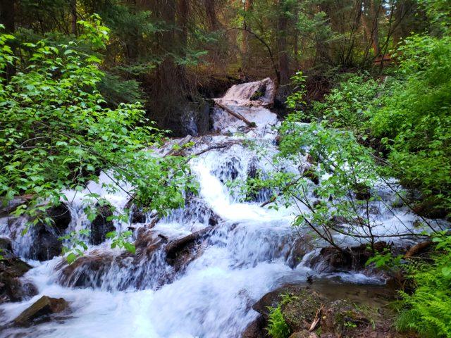 Dead Horse Creek