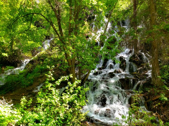 Waterfalls along the trail