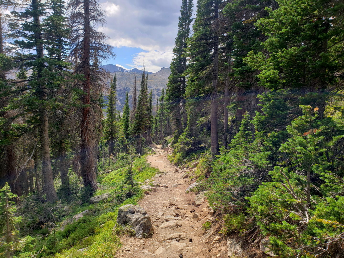 The Flattop Mountain trail