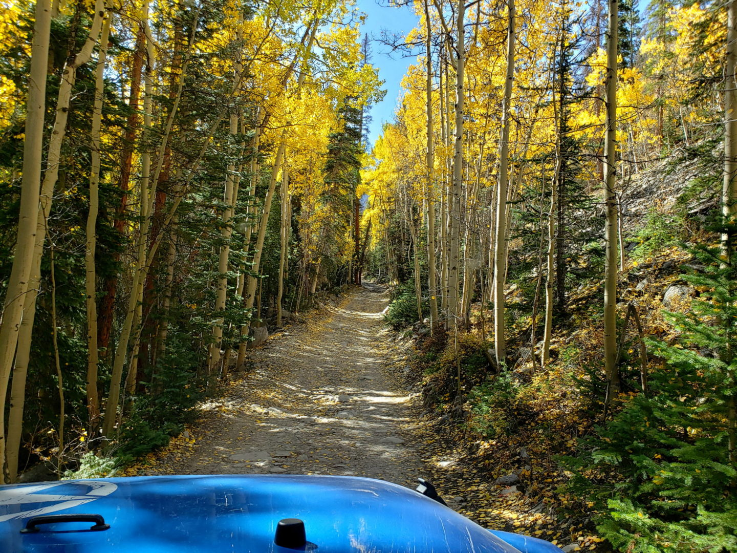 The beginning of Road 277 in fall colors