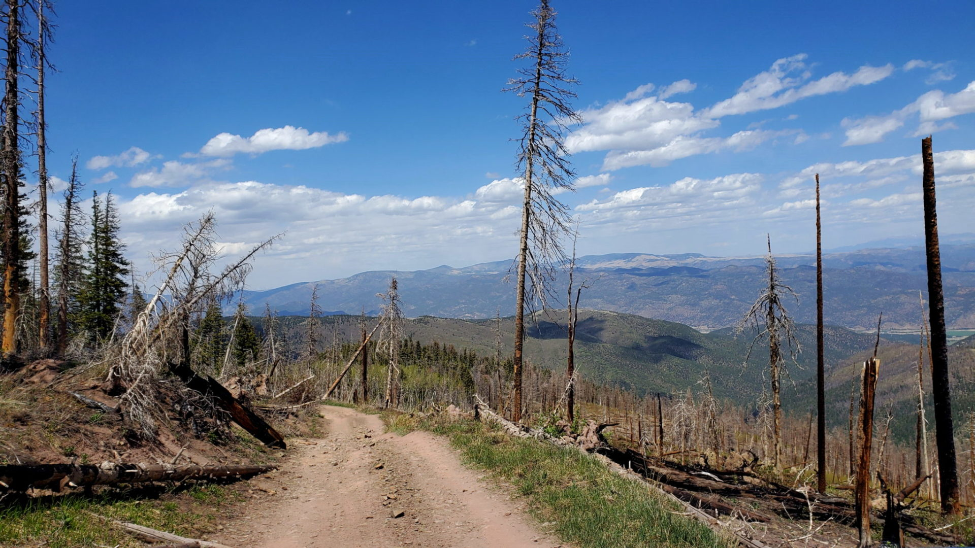 The scar from the Hayden fire on the east side