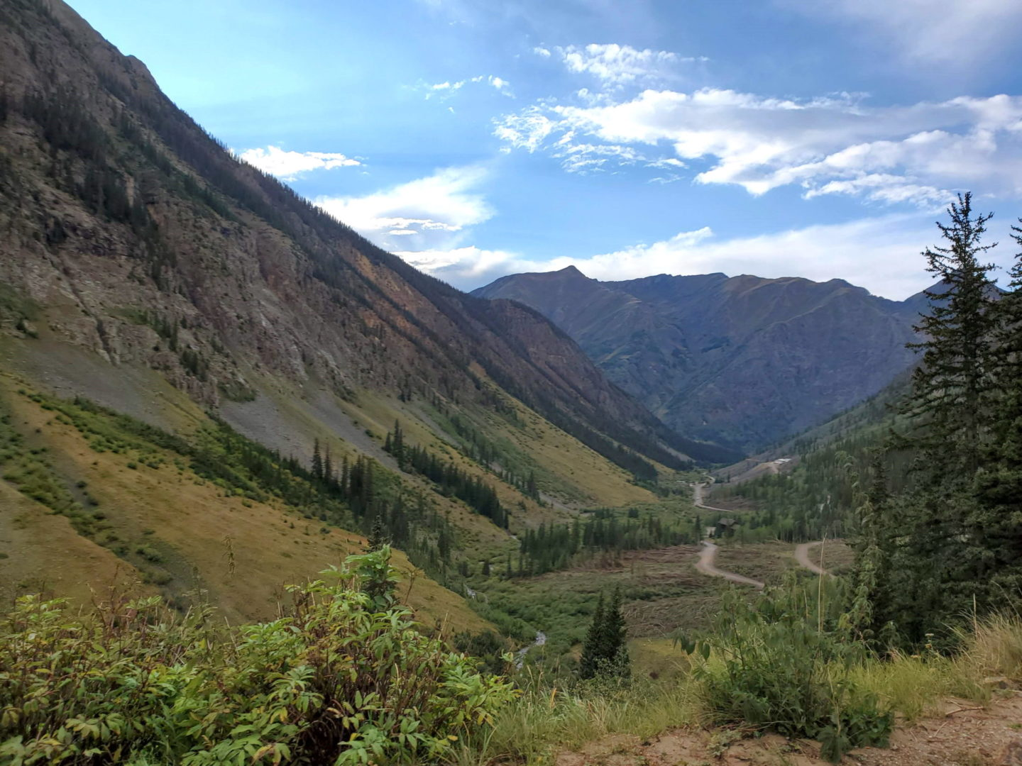 View back into valley (Silverton area)