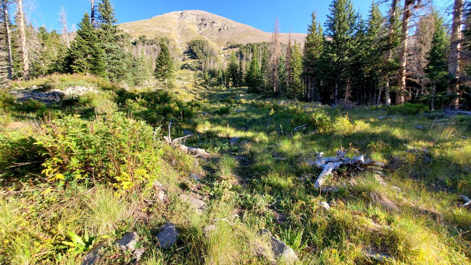 Humboldt Peak 14,064'