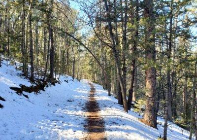 An excellent trail near the trailhead